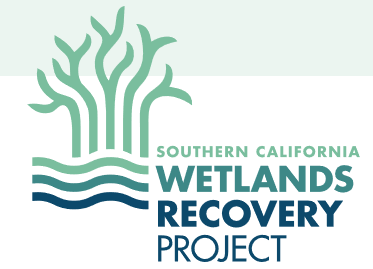 Southern California Wetlands Recovery Project
