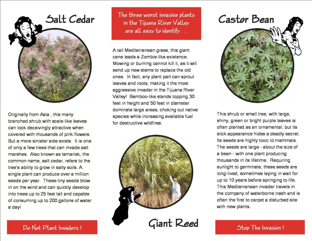 Invasive Plant Control Program brochure (2016_10_04)